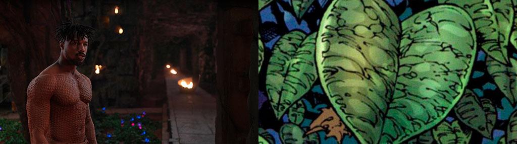 Diferença Erva Coração filme e quadrinhos
