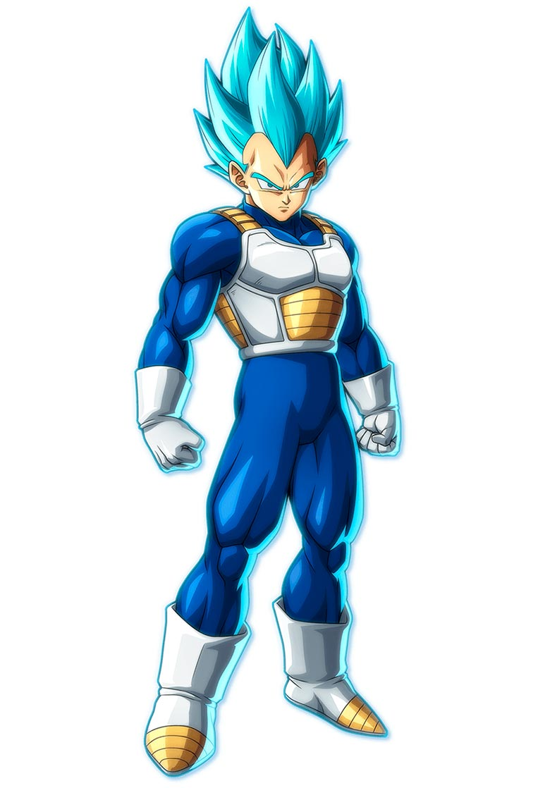 Vegeta super saiyajin blue 11